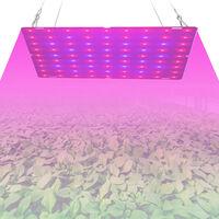 25W LED Grow Light for Indoor Plants 81 LEDs Red & Blue Spectrum Hanging Plant Growing Lamps for Seedlings Vegetables Flowers Greenhouse,model: UK Plug & 81 LEDs