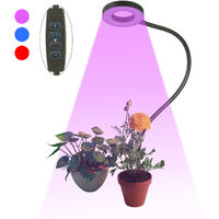LED Grow Ring Light for Indoor Plants with 3 Light Modes 10 Levels Brightness USB Powered Inserted Plant Growing Lamps with Flexible Metal Hose for Succulent Plants Seedlings Flowers,model:Black Dimmable