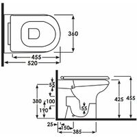 RAK Compact Special Needs 520mm Projection Rimless Back to Wall Toilet Pan