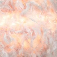Contemporary and Unique Large Pink Real Feather Decorated Pendant Light Shade by Happy Homewares