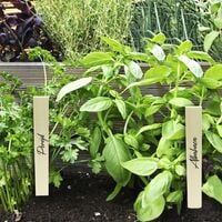 PrimeMatik - Wood stakes 20cm to label and tag plants. Kit of 32 labels and 4 markers