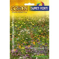 Miscuglio di fiori per prato fiorito (Semente)