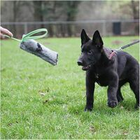Boudin de motivation effet peluche à lancer 26 x 8 cm à poignée pour chiots et sport canin - 727-GREY - ABC Sport Klin