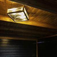Modern Square Ceiling Lamp 2 Steel IP23 - Rotterdam