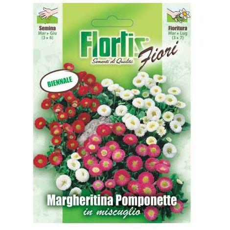 Margheritina Pomponet Mix