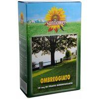 Sementi Prato Ombreggiato Kg 0,25 Sunflower