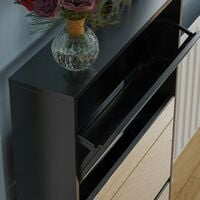 Welham 3 Drawer Mirrored Shoe Cabinet, Black