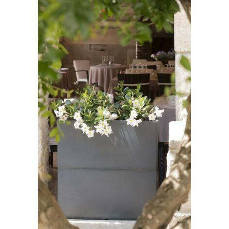 Jardinière Patio | Blanc - 80 cm