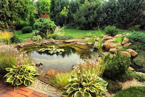 Comment aménager  un bassin de jardin