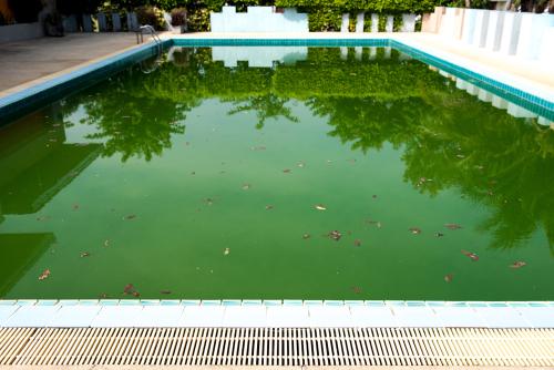 Como Eliminar El Agua Verde De La Piscina