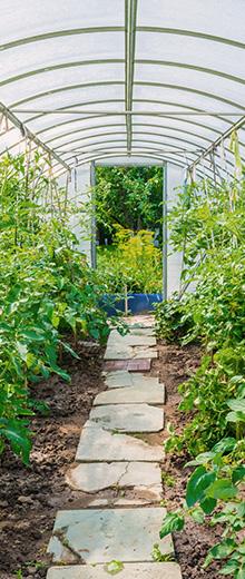 Cómo fijar un invernadero de jardín