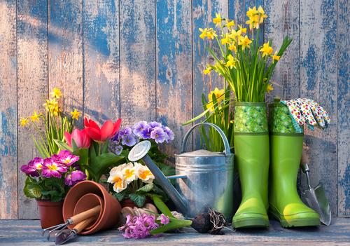Comment Amenager Et Decorer Son Jardin Guide Complet