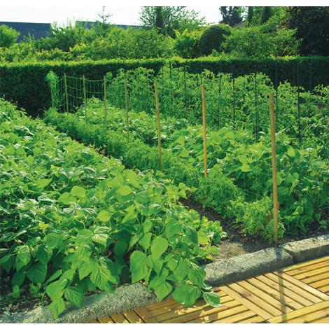 ¿Cómo elegir tutores para plantas y otros sistemas de entutorado?