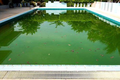 Comment rattraper une eau verte de piscine guide complet - Comment recuperer eau trouble piscine ...