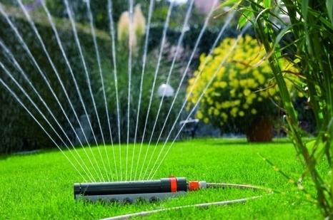 Cómo y cuándo regar el jardín