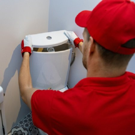 How to  change a push button toilet flush