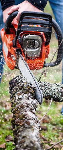 Comment choisir ses outils à main pour scier et débiter du bois