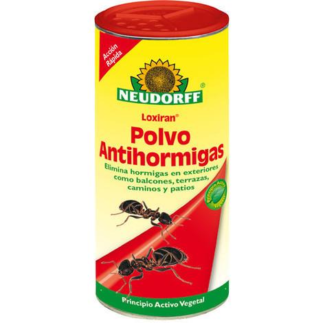 Cómo elegir insecticidas específicos para hormigas