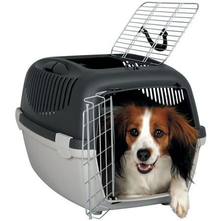 une caisse ou cage de transport pour chien