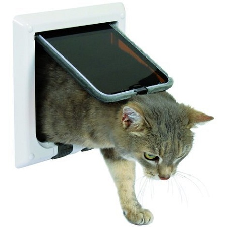 Cat flap buying guide
