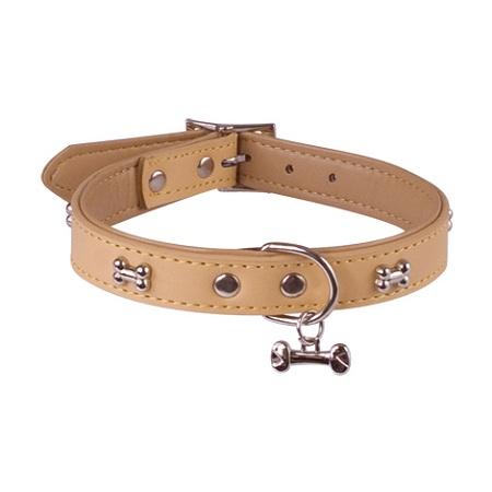 je porte un collier pour chien