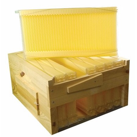 How to choose your  essential hive accessories?