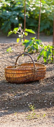 Comment choisir des jardinières ?