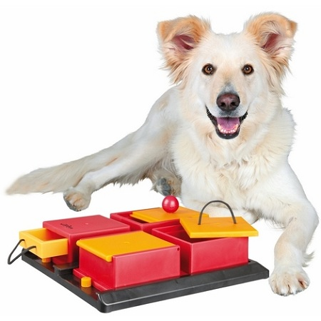 Dog toy  buying guide