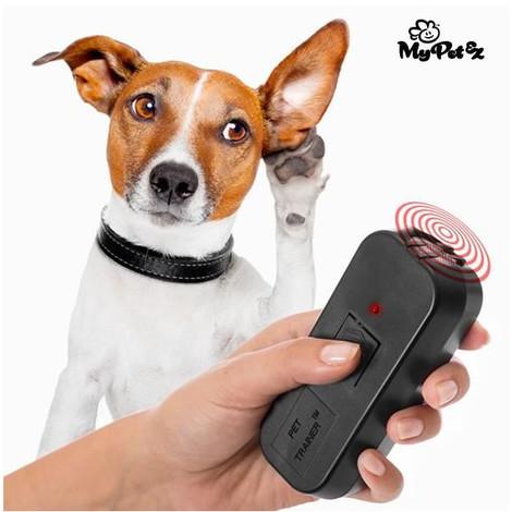 Dog training aids buying guide