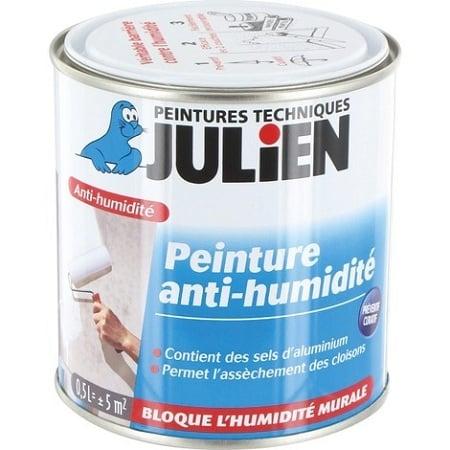 Zoom Sur La Peinture Spécial Humidité Guide Complet