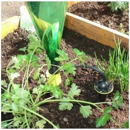 How to choose  a watering system for your vegetable patch?