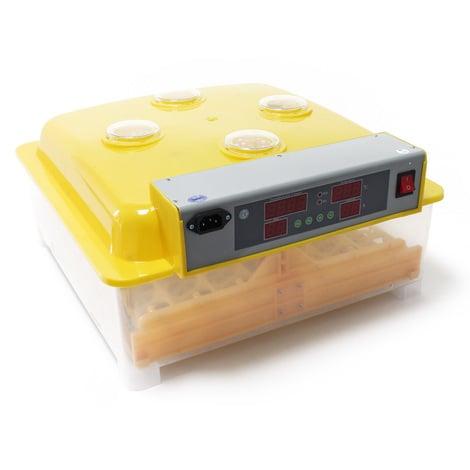 Incubadora automática capacidad para 48 huevos de gallina y 4 ventanas observación, pato, codorniz