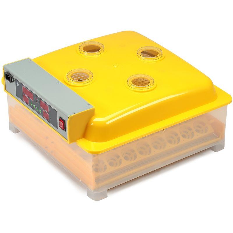 Incubateur automatique pour 48 oeufs éclosoir