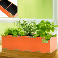 Indoor Herb Garden Kitchen Balcony Patio Terrace Plants Pot Seed Planter Orange