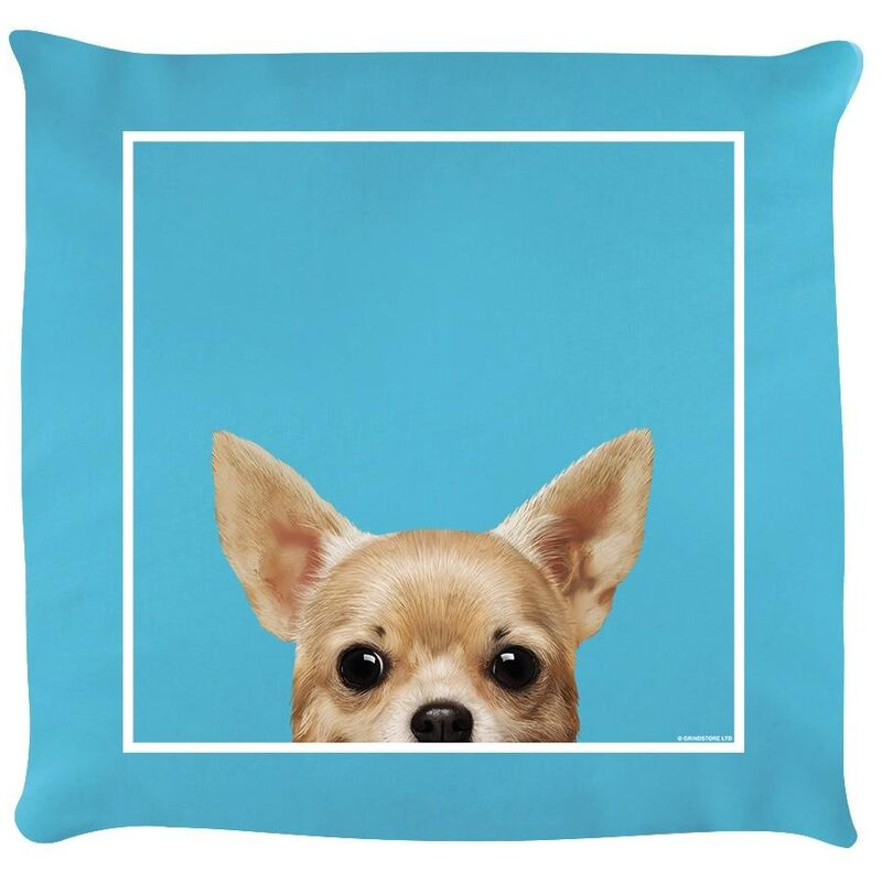 Image of Chihuahua Filled Cushion (One Size) (Sky Blue) - Inquisitive Creatures