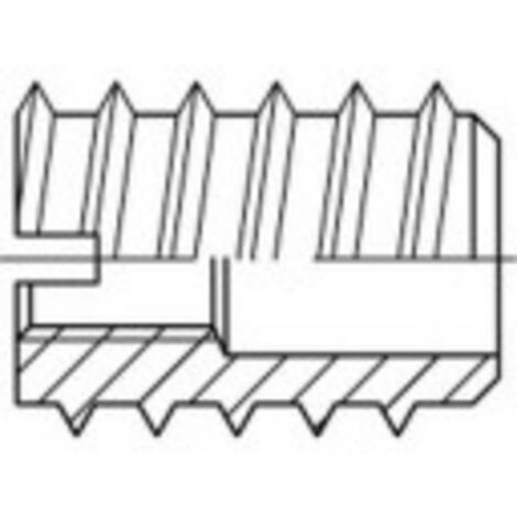 Insert à écrou TOOLCRAFT 144017 M3 8 mm acier 100 pc(s)