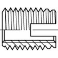 Insert taraudé 159827 50 pc(s) M3 6 mm N/A