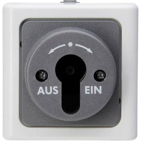 Interrupteur à clé Kopp 561756017 BlueElectric gris