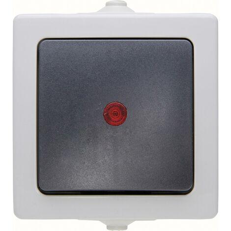 "main image of ""Interrupteur avec témoin lumineux Kopp 566656002 Nautic gris S559461"""