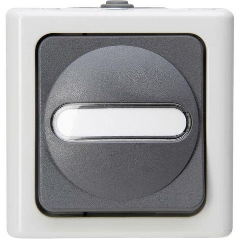 Interrupteur, Interrupteur va-et-vient Kopp 560656006 BlueElectric gris