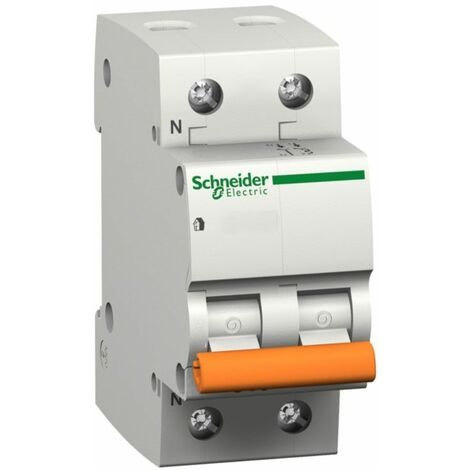 Interruptor automático magnetotérmico Domae 1P+N Schneider