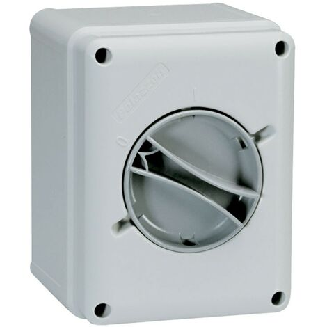 Interruptor-Seccionador Palazzoli pared 2X16A IP65 209162