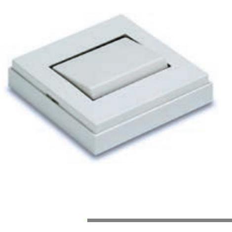 Interruptor Superficie - FAMATEL - 5001 B - 10 A