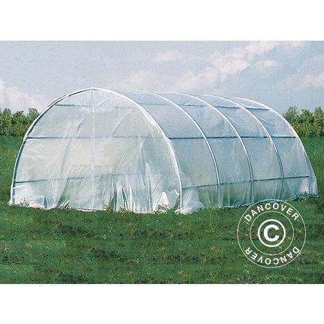 Invernadero de túnel 4x6x2,2m, 24m², Transparent