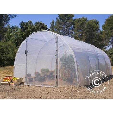 Invernadero túnel 3x6x2m, 18m², Transparente