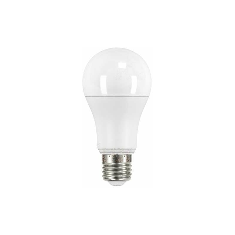 Ampoule LED E27 12,5W A60 équivalent à 77W - Blanc du Jour 6500K