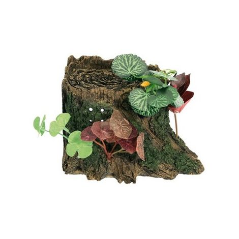 Isola Tarta Paradise Mini Croci