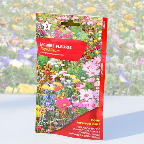 """main image of """"Jachère fleurie, floraison express multicolore. 8 m²"""""""