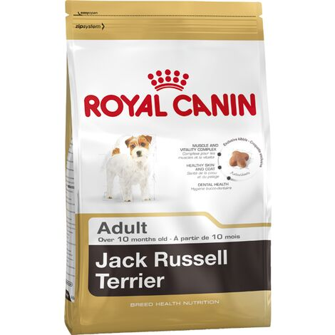 Jack Russell Adult - 500g