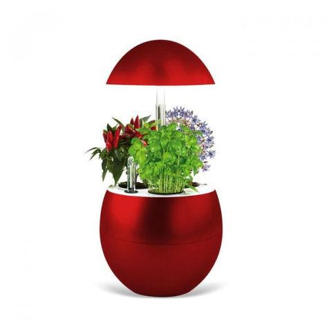 Jardin d'intérieur Vilma avec kit de démarrage et puce NFC - couleur rouge Reconditionné